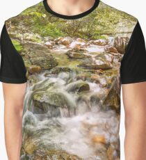 East Fork River  Graphic T-Shirt