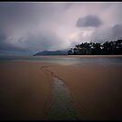 Thornton Beach.....Daintree National Park by Imi Koetz