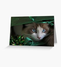 A Christmas Surprise Greeting Card