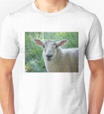 Sheep (Kendal) Unisex T-Shirt