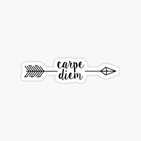 carpe diem arrow Sticker