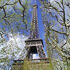 Eiffel Tower in the Spring by Tom  Reynen