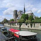 Notre Dame  by Tom  Reynen