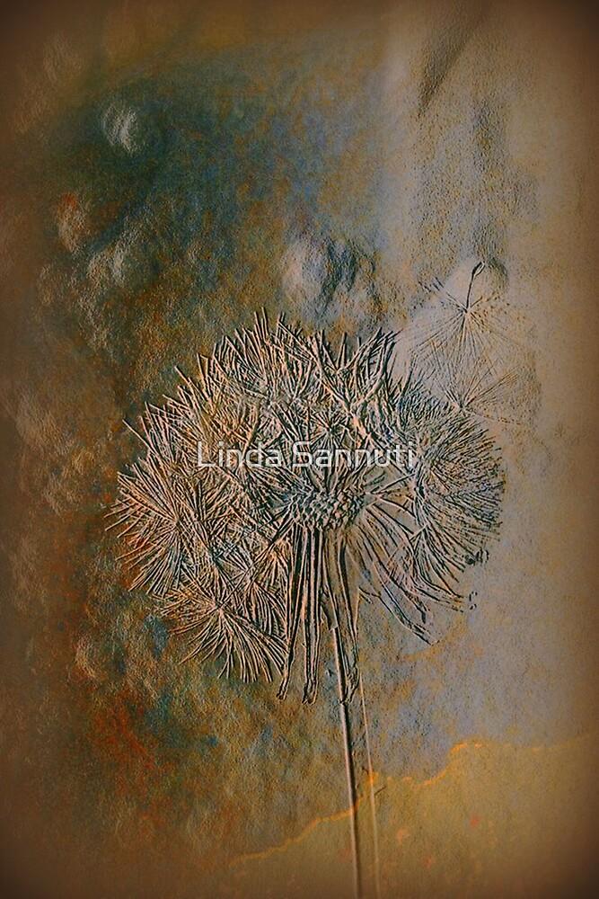 imprint by Linda Sannuti