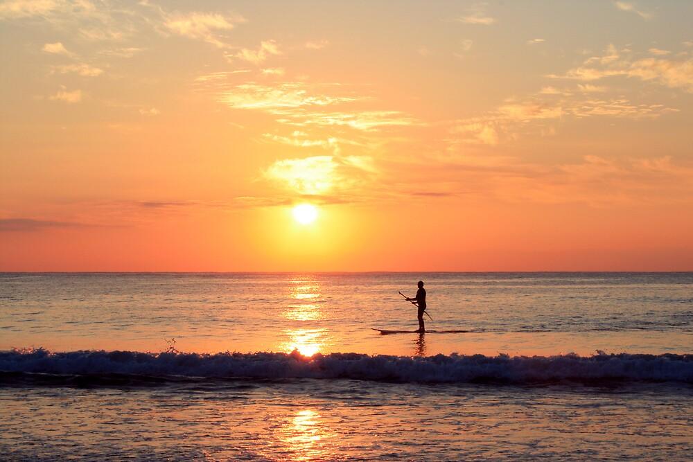Pole Surfer by sidewaysglance