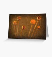 Honey Pots... Greeting Card