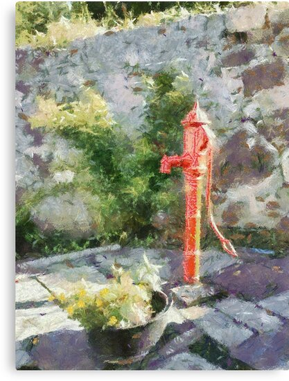 Red water pump, County Carlow, Ireland by David Carton