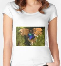 Flying peacock III Women's Fitted Scoop T-Shirt