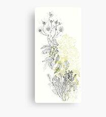 Sacred Nature/ Naturaleza Sagrada Canvas Print