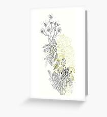 Sacred Nature/ Naturaleza Sagrada Greeting Card