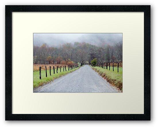 Sparks Lane by Gary L   Suddath