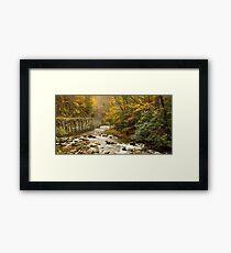 Laurel Creek II Framed Print