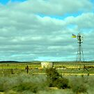 Coorong Windmill_South Australia_Austra by Kay Cunningham