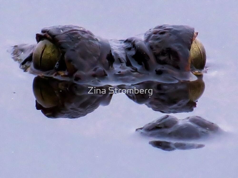 Alligator eyes by Zina Stromberg