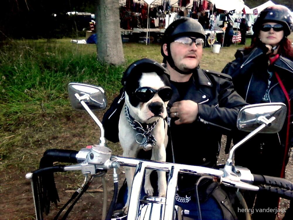 """SPIKE """"THE SUPER BIKER DOG"""" by Henry VanderJagt"""