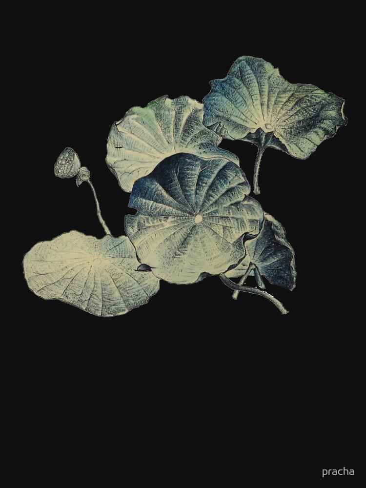 Lotus 4 de pracha