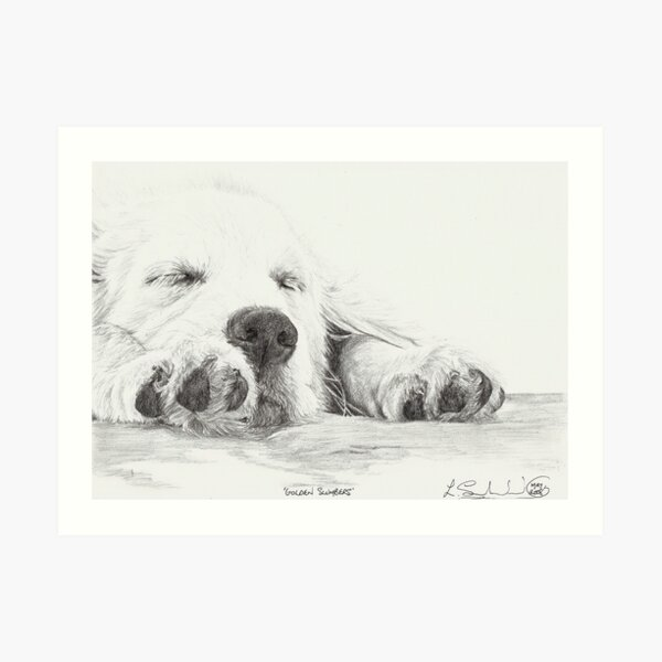 Golden Slumbers Art Print
