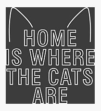 home is where the cats are - with ears (white) Photographic Print