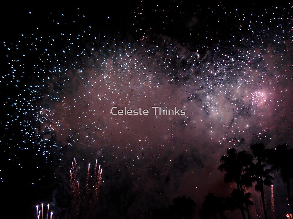 Firework Splendor by Celeste Thinks