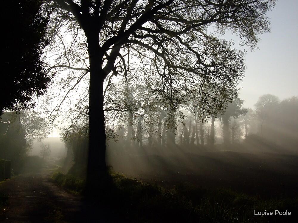 Misty by Louise Poole