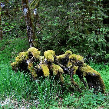 Treebeards Sofa by justjason