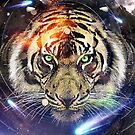 Space Tiger by Vin  Zzep