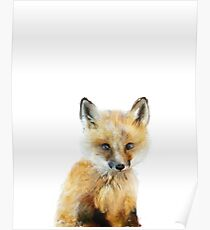 Little Fox Poster