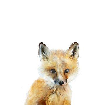 Kleiner Fuchs von AmyHamilton