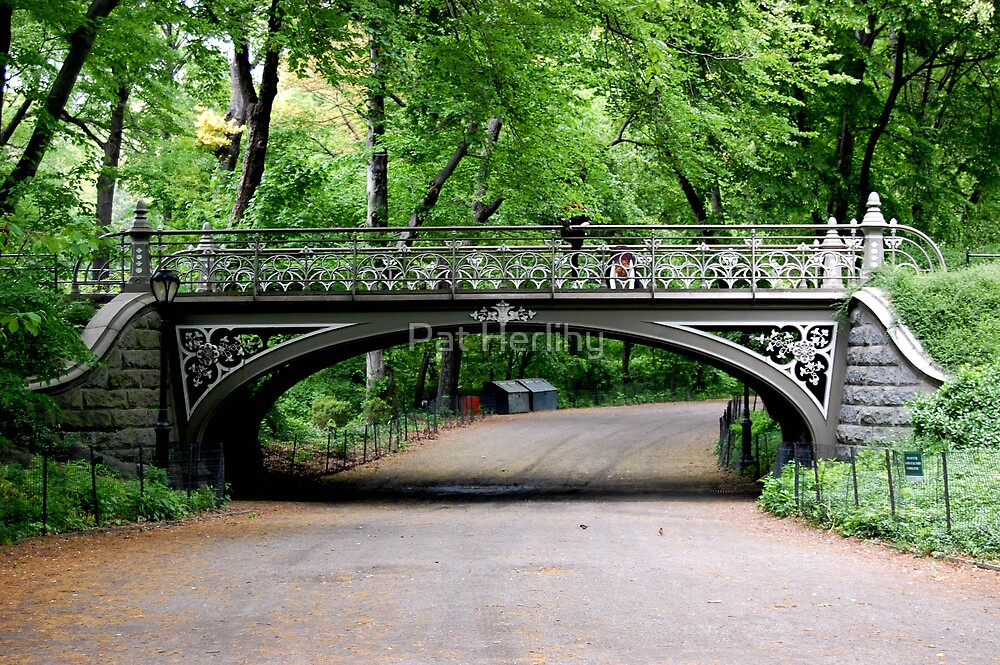 Bridge in Central Park, NYC by Pat Herlihy