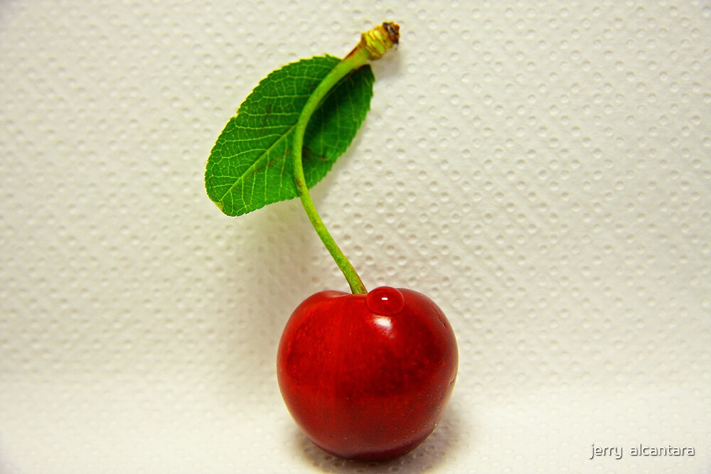 Cherry by jerry  alcantara