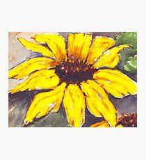 Sunflower, bright and cheery Photographic Print