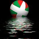 Basque flag setting / rising by stuwdamdorp