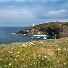 Dinas head Cornwall  by eddiej