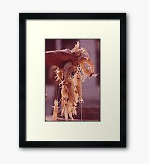 A Handful of Shrimp Framed Print