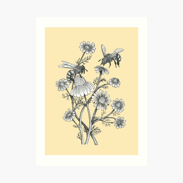bees and chamomile on honey background  Art Print