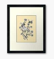 bees and chamomile on honey background  Framed Print