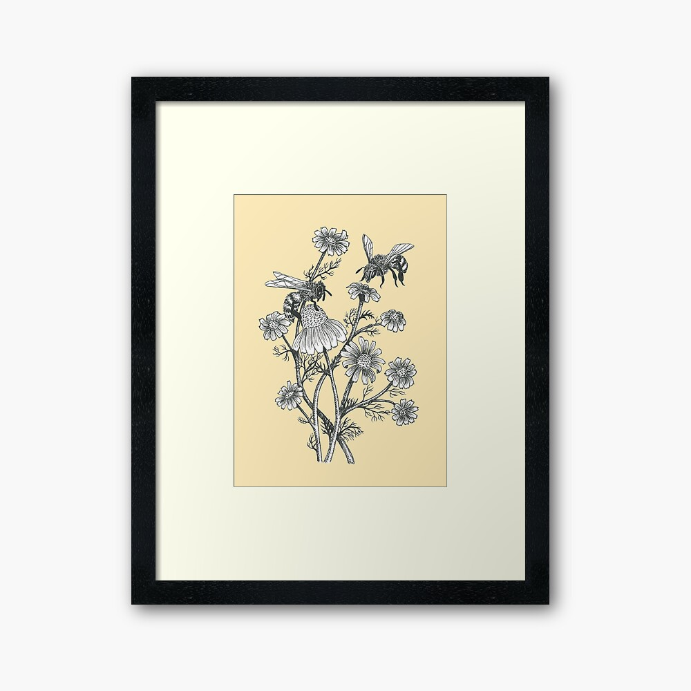 bees and chamomile on honey background  Framed Art Print