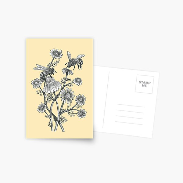 bees and chamomile on honey background  Postcard