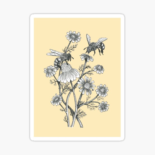bees and chamomile on honey background  Sticker
