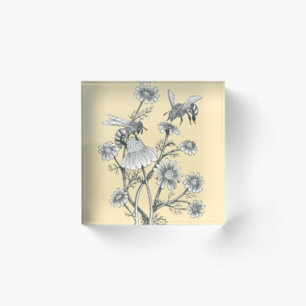bees and chamomile on honey background  Acrylic Block