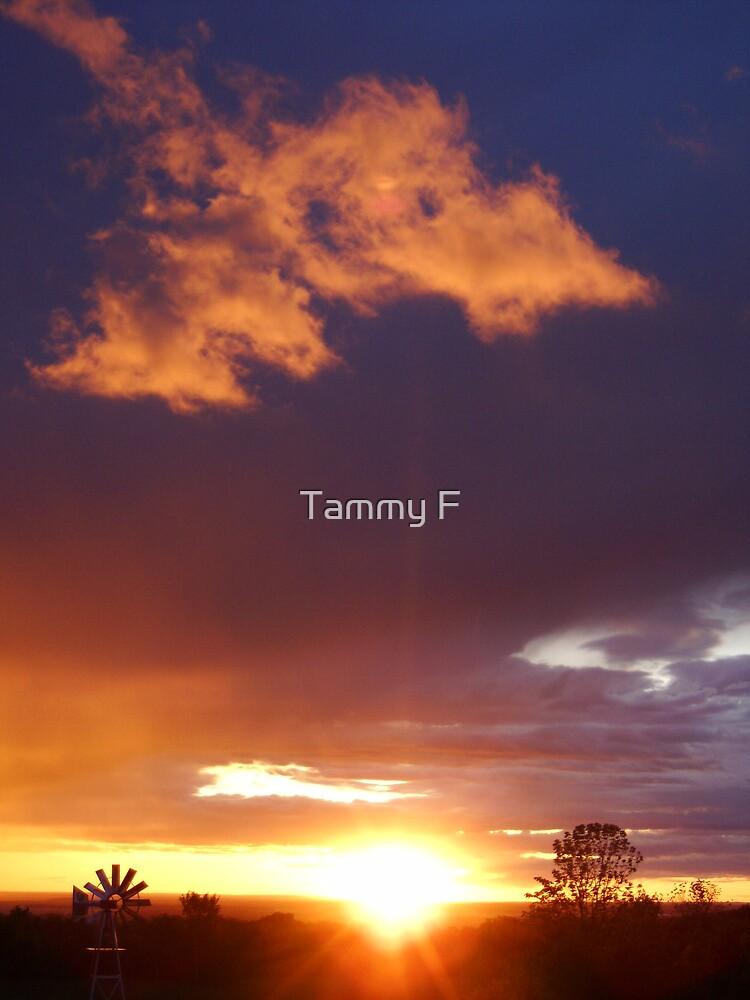 Untitled by Tammy F