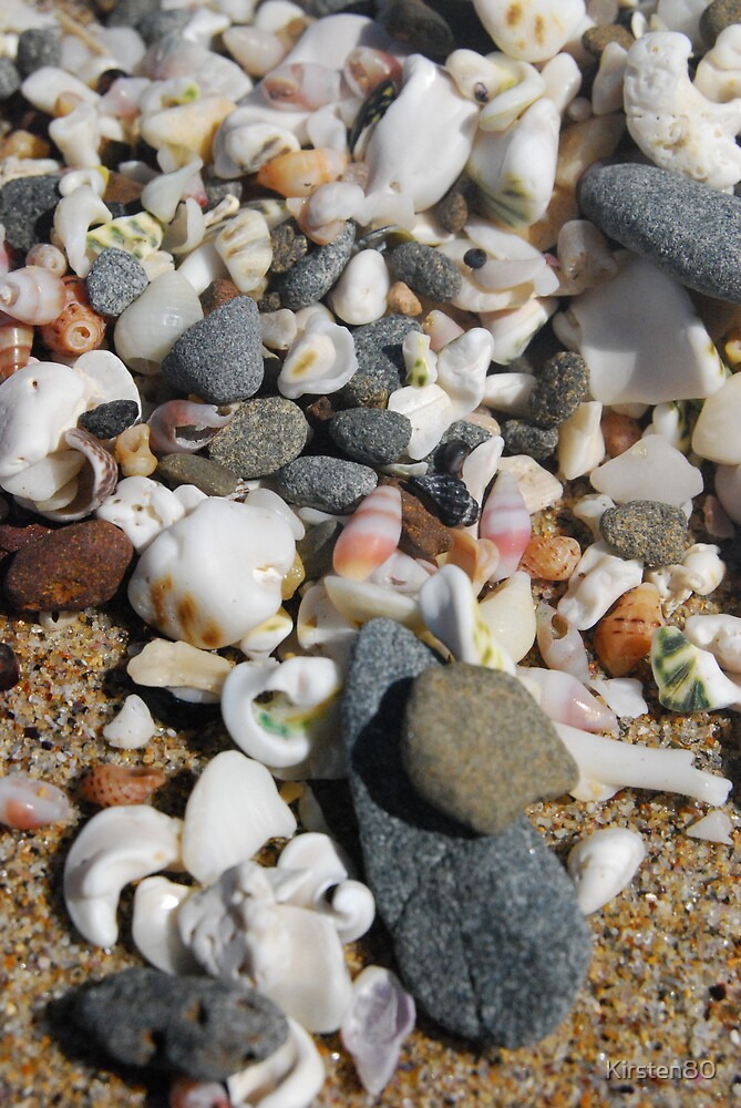 Shells by Kirsten80
