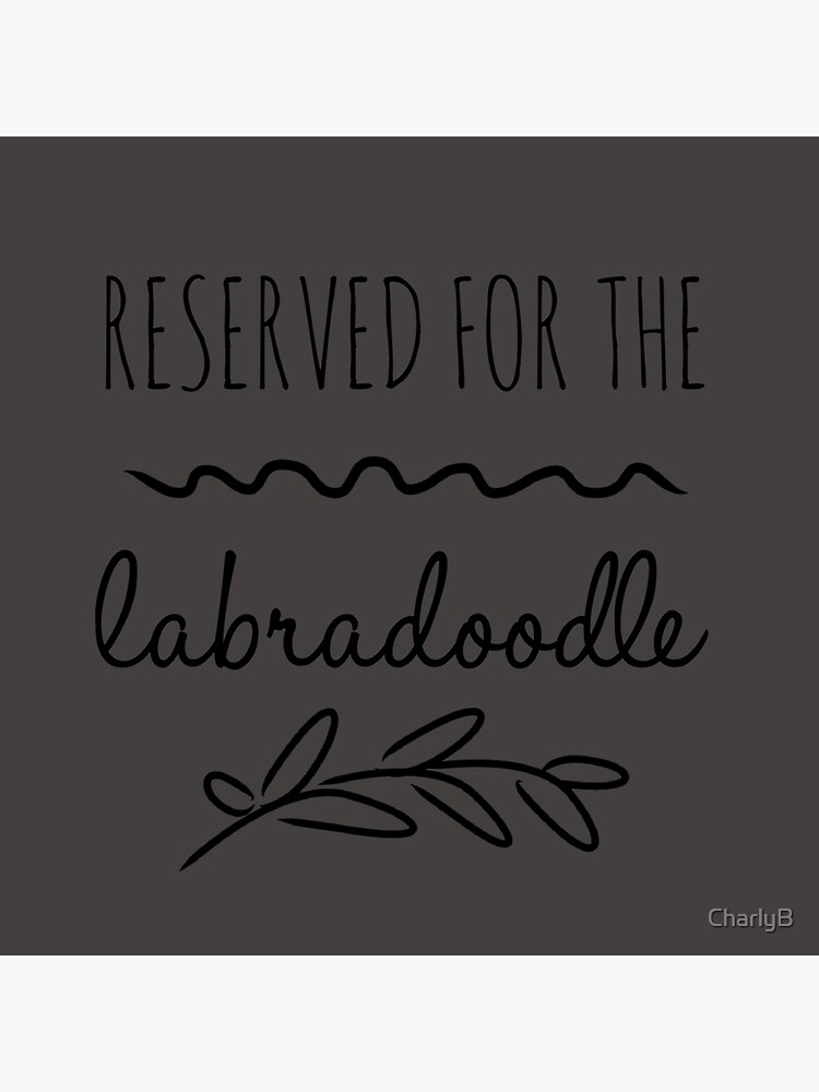 Reserved for the Labradoodle by CharlyB