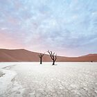 Dawn in DeadVlei by Mieke Boynton