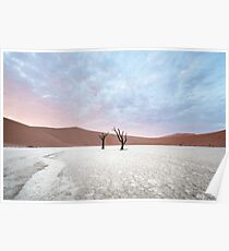 Dawn in DeadVlei Poster
