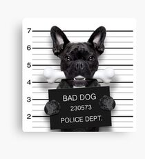 Funny French Bulldog Mugshot  Canvas Print