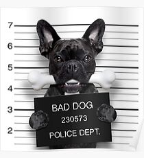 Funny French Bulldog Mugshot T-Shirt Poster