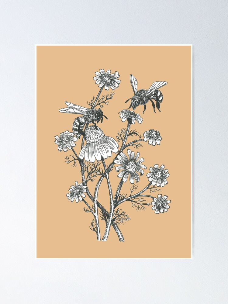 Alternate view of bees and chamomile on caramel background Poster