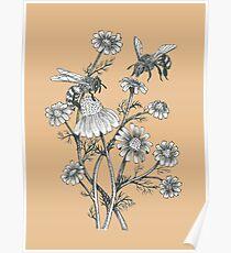 Bienen und Kamille auf Karamell Hintergrund Poster