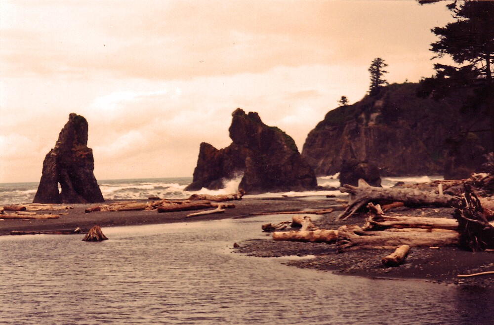 sea stacks at ruby beach, washington, USA by JMDunworth